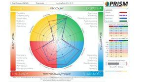 TEST PSYCHOMETRYCZNY Prism Brain Map