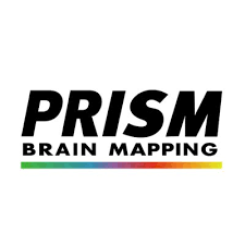 Prism Brain Map